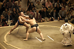Sumo wrestlers in action during a bout at competition in Tokyo