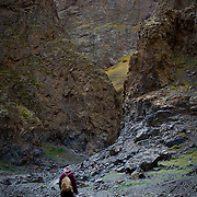Local man hiking through rugged Yolyn Am canyon (, Mongolia - Sep. 2008) (Image ID: 080904-1042091a)