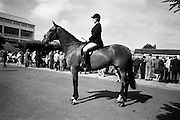 """09/08/1967<br /> 08/09/1967<br /> 09 August 1967<br /> R.D.S. Horse Show 2nd day at Balls bridge, Dublin. Photo shows Mrs D.K. Ker, Poctavoe, Co. Down on """"Liscarbin"""", property of of William McCully, Newtownards, Co. Down."""