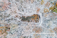 63877-00802 Trees with a dusting of snow aerial view Marion Co. IL