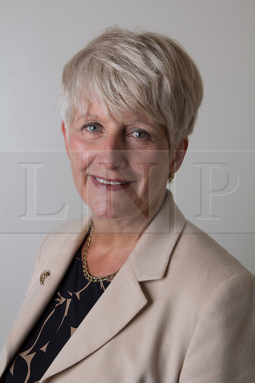 © Licensed to London News Pictures. 19/06/2013. LONDON, Angela Watkinson. Photo credit : EventPics/LNP Images of MP and Peers 2013