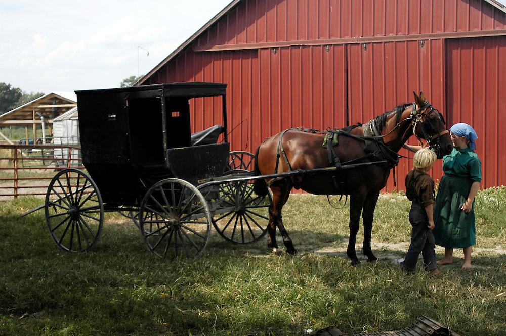 Les Petersheim, installés comté de Clark depuis quatre générations, ont onze enfants de 5 à 23 ans. Pendant l'été, alors qu'il n'y a pas école, tous prennent part aux activités quotidiennes de la ferme et des récoltes. Sur leur exploitation de 162 hectares, la taille moyenne d'une ferme Amish, ils cultivent de l'avoine, du blé, du maïs, du soja, du sorgo et du millet en suivant des techniques écologiques traditionnelles. Ils ont également 40 chevaux, 25 vaches et un petit élevage de poules et cochons.<br /> <br /> The Petersheim, established in Clark county since four generations, have eleven children from 5 to 23 years old. During the summer, whereas the school is closed, all take part in the daily activities of the farm and with harvests. On their exploitation of 162 hectares, average size of an Amish farm, they cultivate oat, wheat, corn, soy beens, sorgo and millet following ecological techniques. They also have 40 horses, 25 cows and a small breeding of hen and pigs.