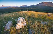 Chief Mountain, Sofa Mountain, Sarcee Mountain Waterton Lakes National Park