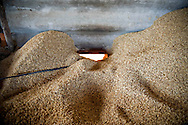 Salt factory in Khanh Hoa area, Vietnam, Asia. Salt is boiled in big vats, supplied by seeds burning.