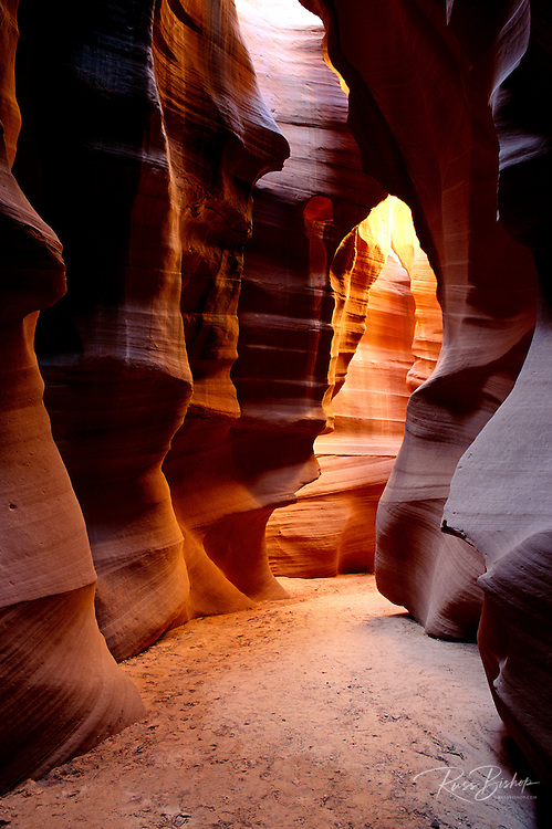 Delicate slickrock formations in upper Antelope Canyon, Navajo Indian Reservation, Arizona USA