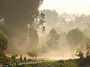 People walking along a misty road towards Ruhengeri in Parc National Des Volcans, Rwanda