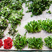 Fresh herbs and vegetables at a local market in Pak Beng, Laos