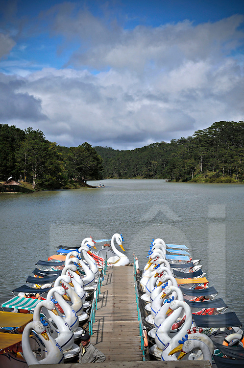 Swan boats neatly docked in a lake, Dalat, Lam Dong Province, Vietnam, Southeast Asia