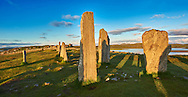 Outer row of stones, 27 metres long,  leading to the central stone circle overlooking Loch Roag, circa 2900BC. Calanais Neolithic Standing Stone (Tursachan Chalanais) , Isle of Lewis, Outer Hebrides, Scotland. .<br /> <br /> Visit our SCOTLAND HISTORIC PLACXES PHOTO COLLECTIONS for more photos to download or buy as wall art prints https://funkystock.photoshelter.com/gallery-collection/Images-of-Scotland-Scotish-Historic-Places-Pictures-Photos/C0000eJg00xiv_iQ<br /> '<br /> Visit our PREHISTORIC PLACES PHOTO COLLECTIONS for more  photos to download or buy as prints https://funkystock.photoshelter.com/gallery-collection/Prehistoric-Neolithic-Sites-Art-Artefacts-Pictures-Photos/C0000tfxw63zrUT4
