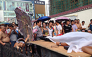"WUHAN, CHINA - (CHINA OUT) <br /> <br /> Extreme Heat Brings 'Dead' Man Back To Life<br /> <br /> People carry a sheet-covered vendor's ""corpse"" on a gurney to help him fake his own death for financial gains on August 3, 2013 in Wuhan, Hubei province of China. They claimed that urban management workers had beaten the man to death and demanded tens of thousands of yuan in compensation. The scheme ended up backfiring on the vendor himself because he couldn't bear the heat. ©Exclusivepix"