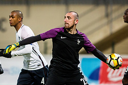 Paul Bernardoni of France during football match between Slovenia and France in Qualifying round for European Under-21 Championship 2019, on November 13, 2017 in Sportni park, Domzale, Slovenia.  Photo by Ziga Zupan / Sportida