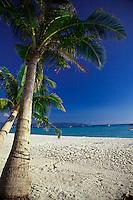Palm trees on White Sand Beach, Boracay, Philippines.
