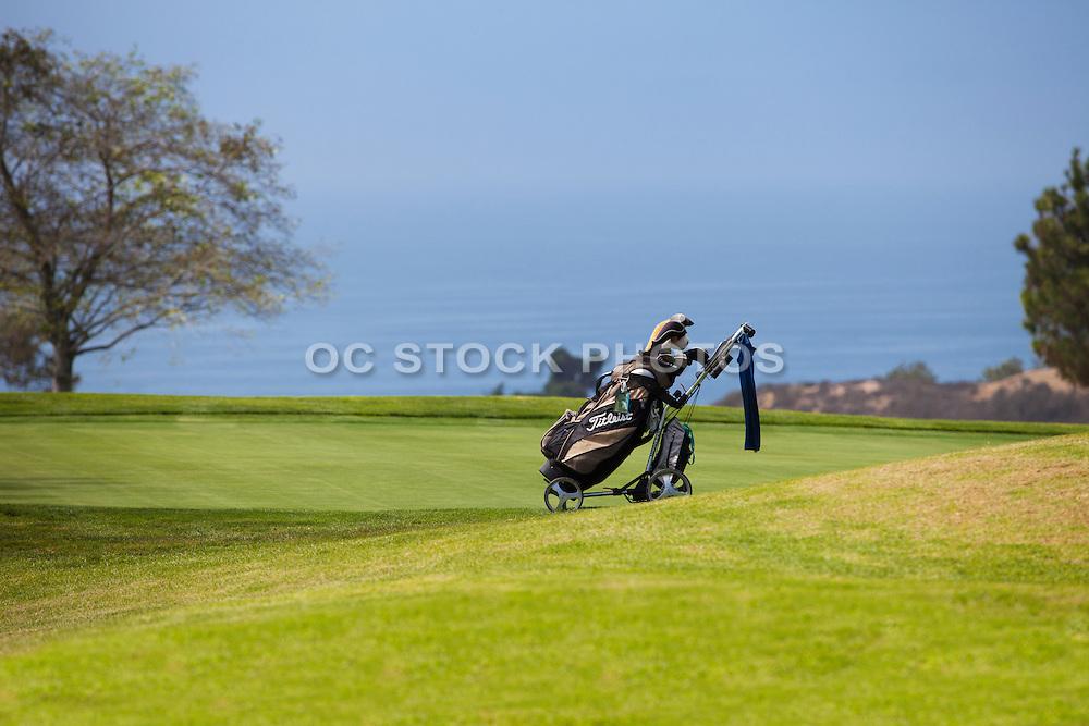 Torrey Pines Golf Course in La Jolla