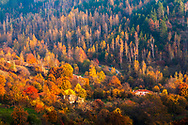 Small village in Rhodope Mountains at autumn time