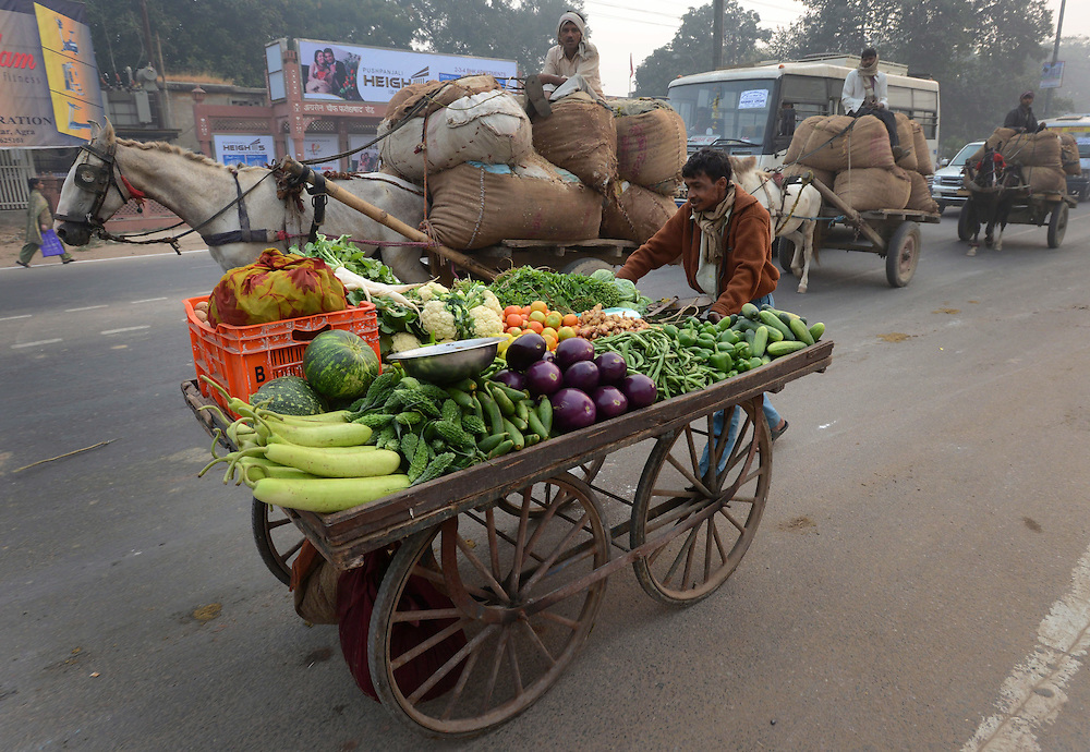 People make their way to work in Agra, India on Monday, November 5, 2012. THE CANADIAN PRESS/Sean Kilpatrick