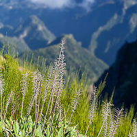The hike between Pico do Arieiro to Pico Ruivo is one of the famoust trekking route in Madeira.