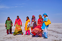 Inde, Gujarat, Kutch, touristes dans le desert de sel du Rann de Kutch // India, Gujarat, Kutch, Rann of Kutch, local turist visiting the salt desert