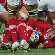 Bradley Davies, Wales, prepares to release the ball after winning a line out during the Ireland V Wales Quarter Final match at the IRB Rugby World Cup tournament. Wellington Regional Stadium, Wellington, New Zealand, 8th October 2011. Photo Tim Clayton...