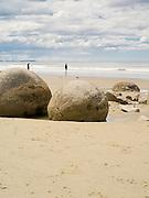 View of the Moeraki Boulders, near Moeraki, Otago, New Zealand.  The Moeraki Boulders are naturally formed septarian concretions, on the Koekohe Beach, between Moeraki and Hampden.