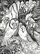 The Owl and the Birds from the book ' Aesop's fables ' Published in 1912 in London by Heinemann and in  New York by Page Doubleday Illustrated by Arthur Rackham,
