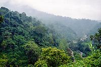 West Sumatra, Bukittinggi-Padang. Along the road between Bukittinggi and Padang. Steep terrain, humid and green.