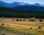 Recognized since 1915, Rocky Mountain National Park is home to a large array of flora and wildlife as well as spectacular mountains. Visitors enjoy; fishing, camping, hiking, and backpacking among many other activities.