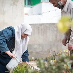 Home-based farming, Jordan