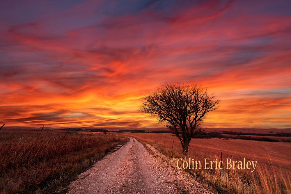 Photo by Colin E Braley