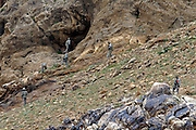 Soldiers of the 2nd platoon of the 10th mountain division Search for taleban fighters and wepons caches in caves in Charkh district in Logar province, Afghanistan on Saturday, May 9th 2009...Photo: Guilad Kahn.