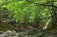 White River eco-trail in Central Balkan