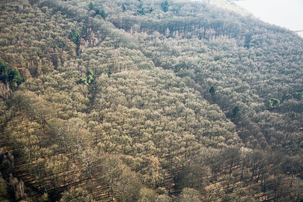 Nederland, Utrecht, Rhenen, 11-02-2008; kale winterse bomen in het bos op de Grebbeberg, tussen Erebegraafplaats en de de Neder-Rijn (rechtsboven); strijklicht, bosbouw, boom, verzuring, milieu, zure regen..luchtfoto (toeslag); aerial photo (additional fee required); .foto Siebe Swart / photo Siebe Swart 11-02-2008