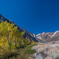 Fall colors punctuate dramatically eroded mountains overlooking McGee Canyon in the eastern Sierra Nevada near Bishop & Mammoth Lakes, California.