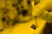 Belo Horizonte_MG, Brasil...Laboratorio de producao de chip magnetico no Instituto de Ciencias Exatas(ICEX) da UFMG, na foto detalhe da mao com o chip..The Laboratory production of magnectic chip in Instituto de Ciencias Exatas(ICEX) of UFMG, in this photo the hand with a chip...Foto: VICTOR SCHWANER /  NITRO