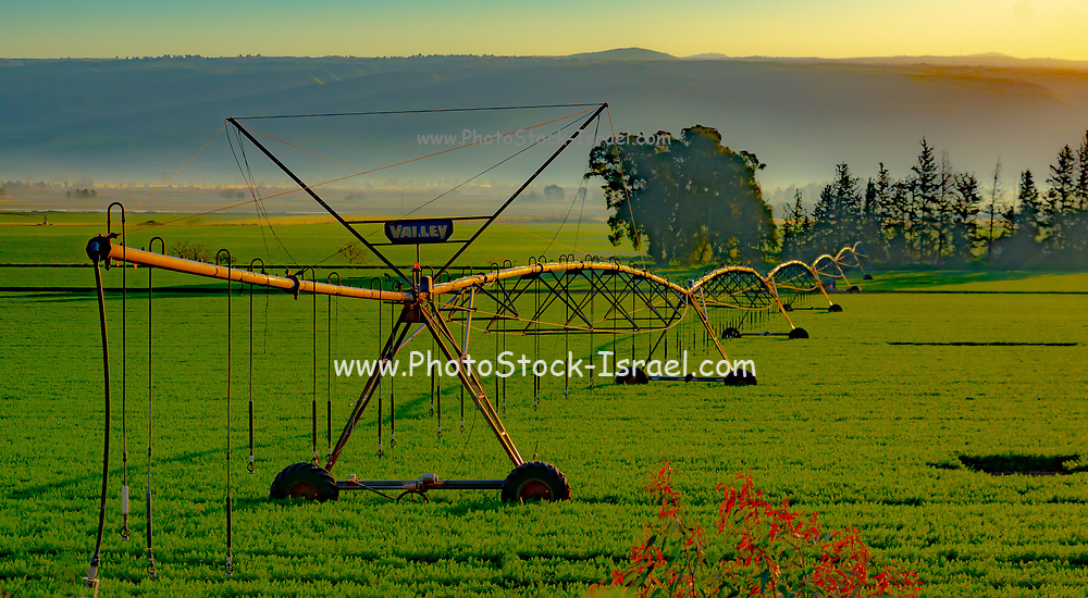 A computerized mobile sprinkler line This line advances automatically by computerized feedback producing an even and efficient water covering of this field. Photographed in the Hula Valley, Israel