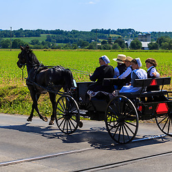 Strasburg, PA - June 19, 2016: An Amish family riding in an open black wagon on a county road in Lancaster County, PA.