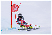 Team GB's Robert Holmes competes in the men's giant slalom during the Lausanne 2020 Youth Olympic Games at Les Diablerets Alpine Centre in Switzerland. January 2020