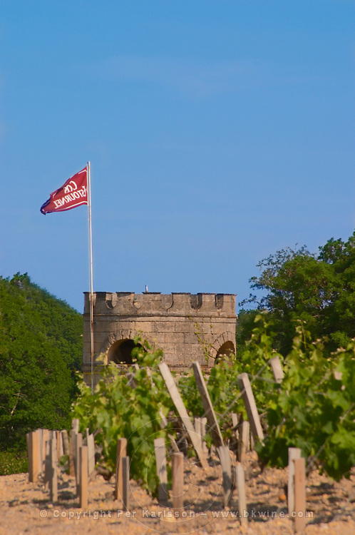 The vineyard, tower and flag of Chateau Cos d'Estournel Saint Estephe Medoc Bordeaux Gironde Aquitaine France
