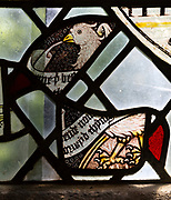 Saint Nicholas chapel, Gipping, Suffolk, England, UK medieval fragments stained glass of east window eagle of Saint John