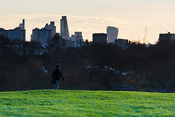 December 11th 2014. A commuter walks to work as dawn breaks over the London skyline.