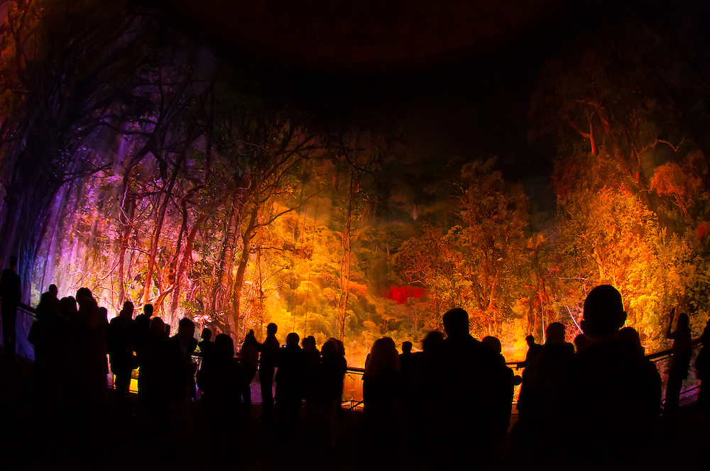Amazonia, Yadegar Assisi's Magical Picture of Nature, the largest 360 degree panorama in the world, Gasometer, Leipzig, Saxony, Germany