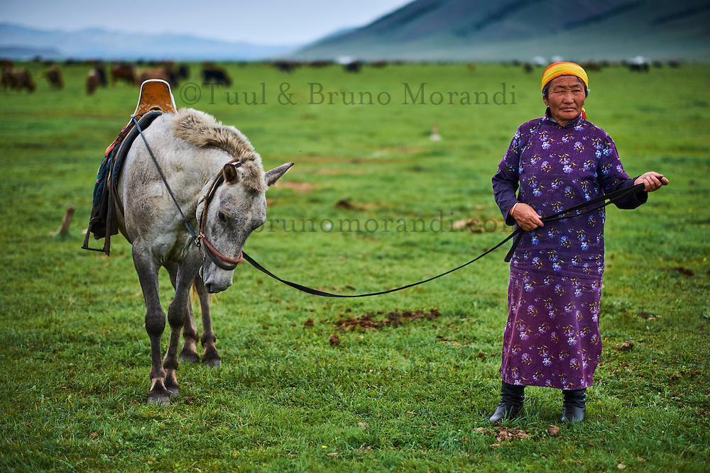 Mongolie, Arkhangai, campement nomade dans la steppe, femme mongole aves son cheval // Mongolia, Arkhangai province, yurt nomad camp in the steppe, Mongolian woman with her horse