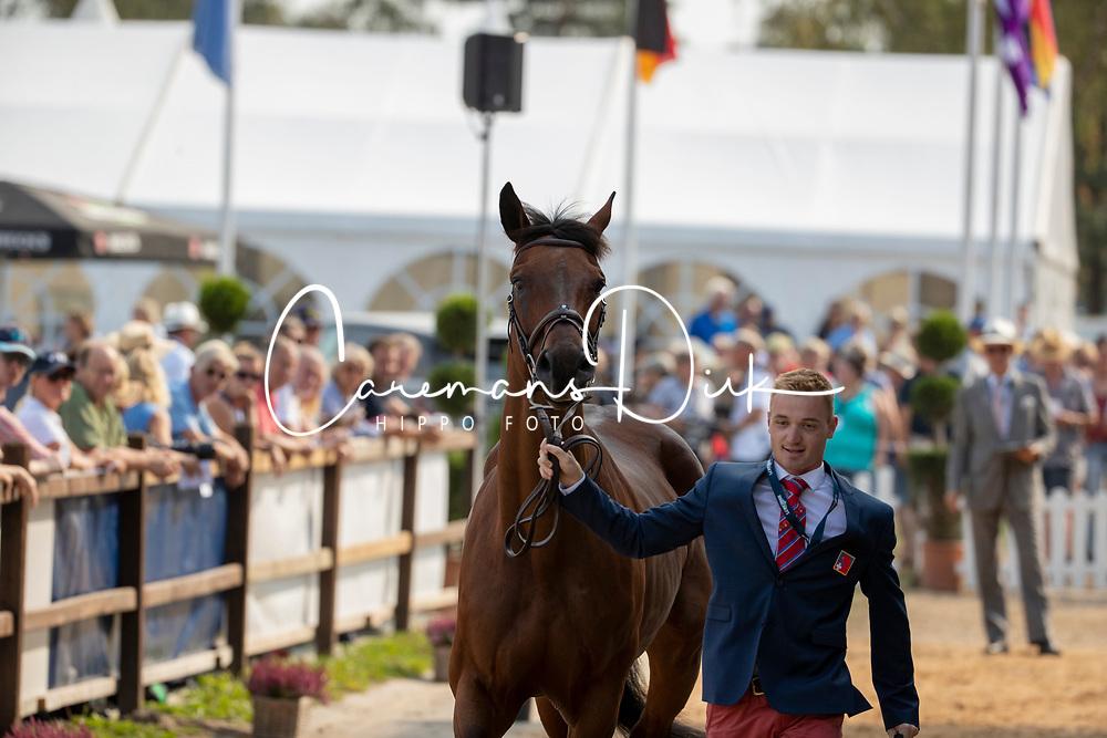 Godel Robin, SUI, Grandeur de Lully CH<br /> European Championship Eventing<br /> Luhmuhlen 2019<br /> © Hippo Foto - Stefan Lafrentz