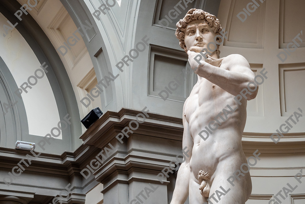 Statue of David (David by Michelangelo) in the Galleria della accademia, Florence, Italy May 12, 2019. Horizontal Image with copy space.