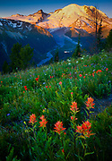Sunrise at Mount Rainier's Sunrise area with the White River below