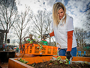 King Willem-Alexander and Queen Maxima volunteering for NL Doet in the neighborhood garden in Breda, The Netherlands, 10 March 2017. NL Doet is a National Volunteer day organized by the Oranje Fonds, the King and the Queen are patron and patroness of the foundation.