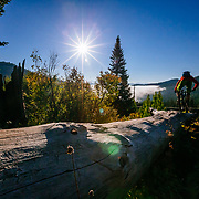 Andrew Whiteford drops into the Powerline Trail off of Teton Pass near Wilson, Wyoming.