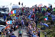 Peter Sagan (SVK - Bora - Hansgrohe) during the 105th Tour de France 2018, Stage 15, Millau - Carcassonne (181,5 km) on July 22th, 2018 - Photo Kei Tsuji / BettiniPhoto / ProSportsImages / DPPI