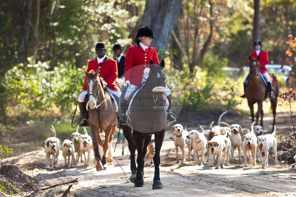 Fox hunters make their way through the forest with the hounds during the start of the fox hunting season November 29, 2009 at Middleton Place plantation in Charleston, SC. The hunt is a drag hunt where a scented cloth is used instead of live fox