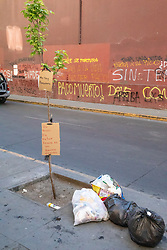 """Please Do Not Throw Trash, I Am Not A Dump"""