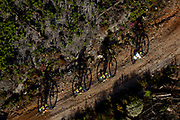 The two Scott mens teams break away from the lead bunch during stage 5 of the 2017 Absa Cape Epic Mountain Bike stage race held from Oak Valley Wine Estate in Elgin, South Africa on the 24th March 2017<br /> <br /> Photo by Greg Beadle/Cape Epic/SPORTZPICS<br /> <br /> PLEASE ENSURE THE APPROPRIATE CREDIT IS GIVEN TO THE PHOTOGRAPHER AND SPORTZPICS ALONG WITH THE ABSA CAPE EPIC<br /> <br /> ace2016 Commercial photography commissioned to Beadle Photo by international brands